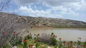 مقاله  منطقه تحت حفاظت (محیط زیست)؛ ویژگیها و کارکردهای آن و نقش مردم در حفظ آنها